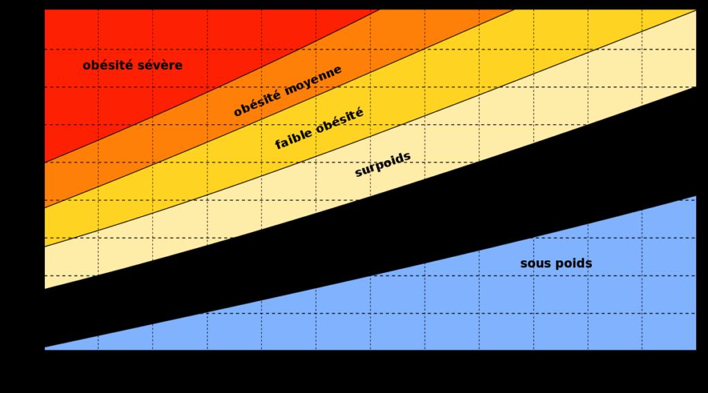 courbe poids idela
